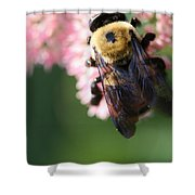 Bumble From Above Shower Curtain