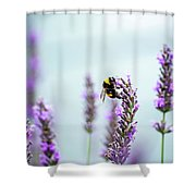 Bumblebee And Lavender Shower Curtain