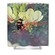 Bumblebee Before Dawn 2 Shower Curtain