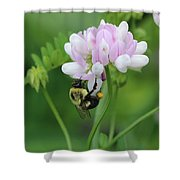 Bumblebee On Crown Vetch Shower Curtain