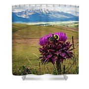 Bumblebee With The Best View Shower Curtain