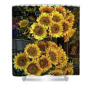 Bunches Of Sunflowers Shower Curtain
