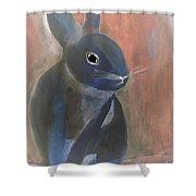 Bunny A Shower Curtain