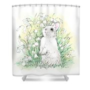 Bunny In White Shower Curtain