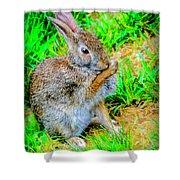 Bunny Secrets Shower Curtain