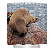 Buoy Break Shower Curtain