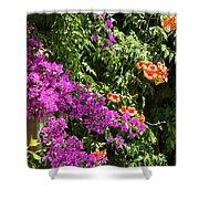 Burgazada Island Flower Color Shower Curtain