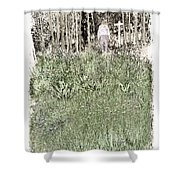 Burial Ground Shower Curtain