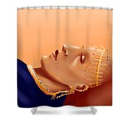 Burial Of The Saint Of The Desert Shower Curtain