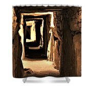 Burial Tomb Shower Curtain