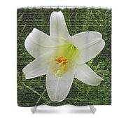Burlap Textured Easter Lily Shower Curtain