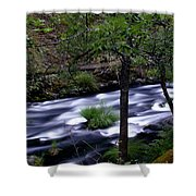 Burney Creek Shower Curtain