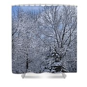 Burnidge Winter Shower Curtain