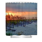 Burning Grasses And The Fence Shower Curtain