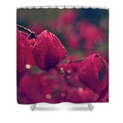 Burning Red Shower Curtain