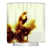 Burning Time Shower Curtain