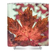 Burns Red Shower Curtain