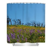 Burnt Trees Shower Curtain