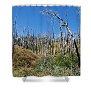 Burnt White Firs Shower Curtain