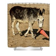Burro Playing With Safety Cone Shower Curtain