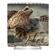 Burrowing Owlet Workout Shower Curtain