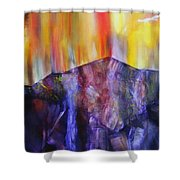 Burst Of Colour Shower Curtain