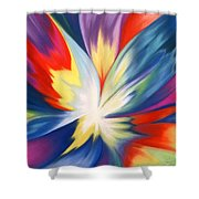Burst Of Joy Shower Curtain
