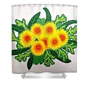 Burst Shower Curtain