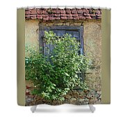 Bush And Window Shower Curtain