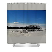 Bush In The Snow  Shower Curtain