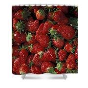 Bushel Of Strawberries Shower Curtain