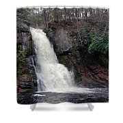 Bushkill Falls Shower Curtain