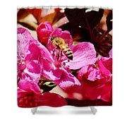 Busy As A Bee 031015 Shower Curtain