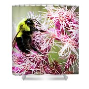 Busy As A Bumblebee Shower Curtain