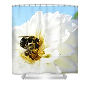 Busy Bee's Shower Curtain