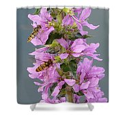 Busy Flower Shower Curtain