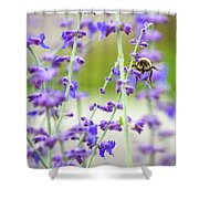 Busy In Lavender 3 Shower Curtain