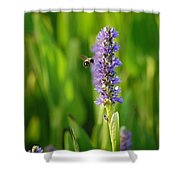 Busy Shower Curtain