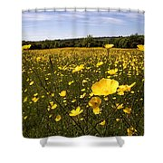 Buttercup Field Shower Curtain