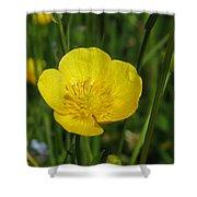Buttercup Flower Shower Curtain