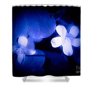 Buttercups In White Blue And Black Shower Curtain
