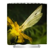 Butterflies And Blossoms Shower Curtain
