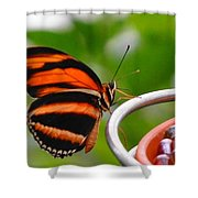 Butterflies Are Blooming Shower Curtain