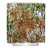Butterflies In The Grove  Shower Curtain