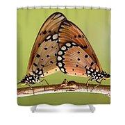 Butterflies Mating Shower Curtain