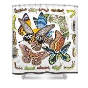 Butterflies Moths Caterpillars Shower Curtain
