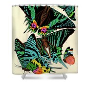 Butterflies, Plate-7 Shower Curtain