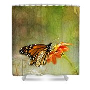 Butterfly And Bokeh Shower Curtain