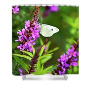 Butterfly And Bouquet Shower Curtain