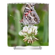 Butterfly And Bugs On Clover Shower Curtain